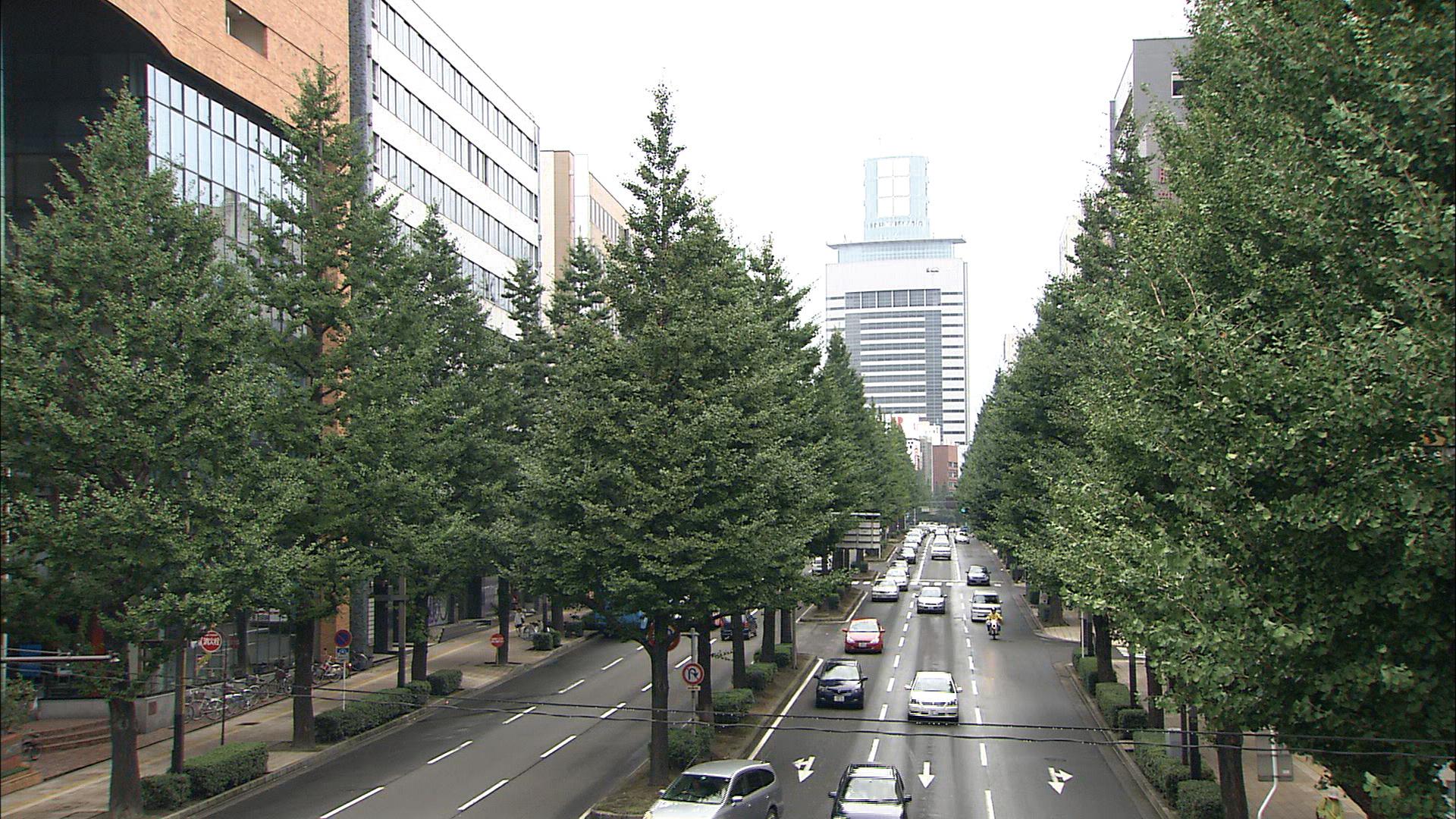 No.010168 上杉山通
