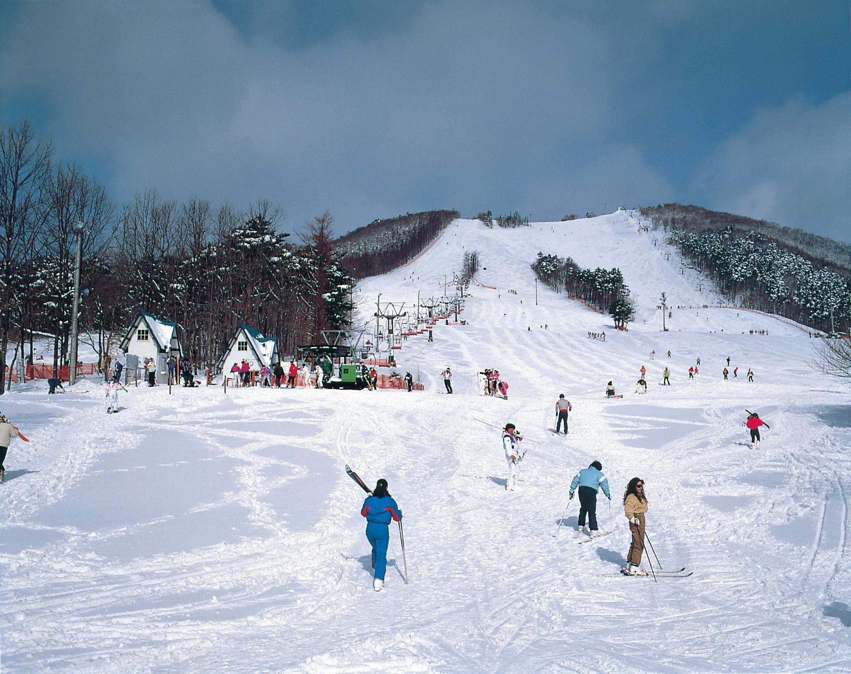 No.010294 泉ヶ岳スキー場