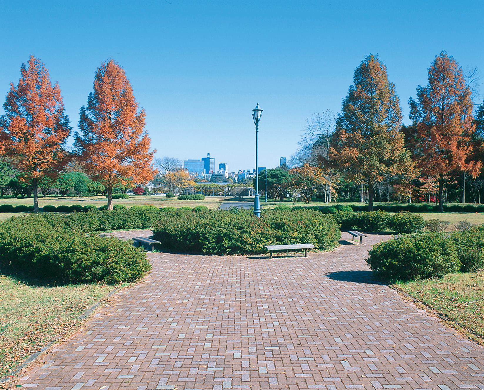 No.010359 青葉山公園