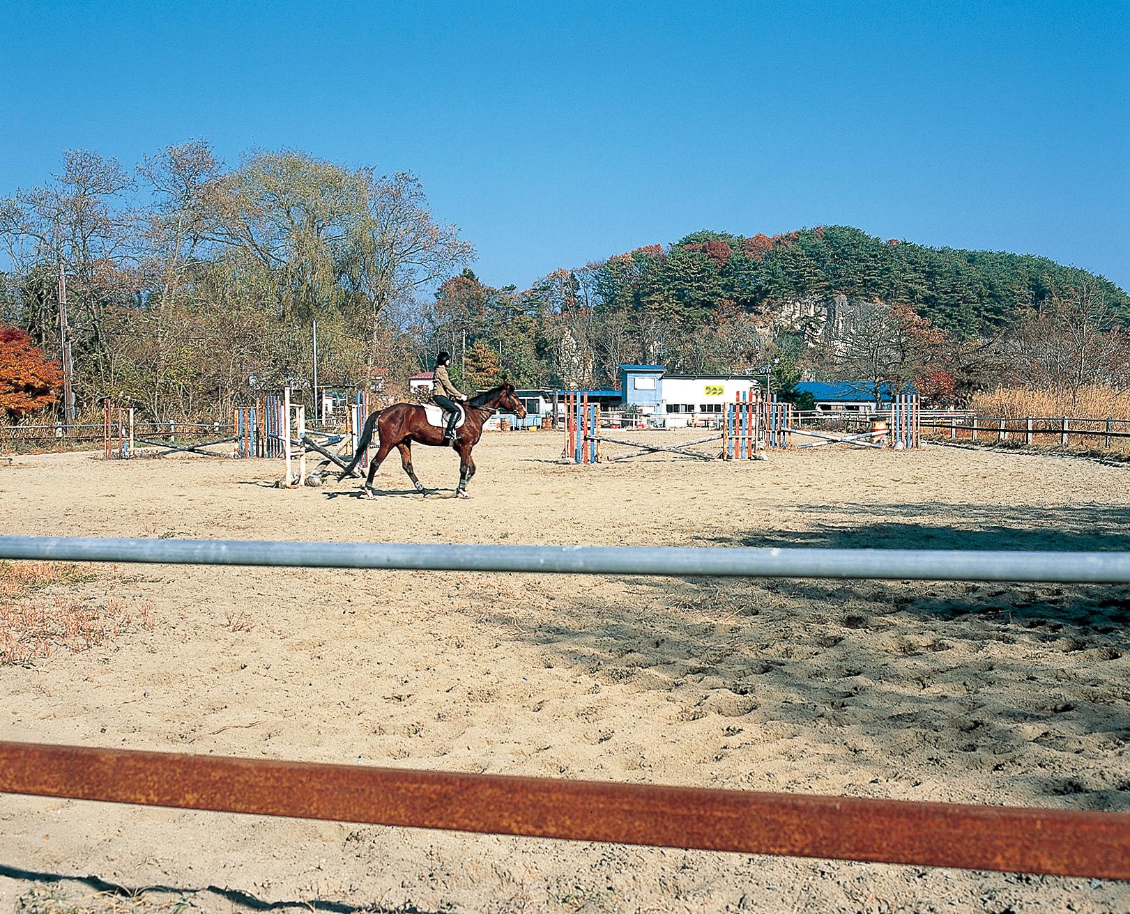 No.120020 奥松島乗馬クラブ