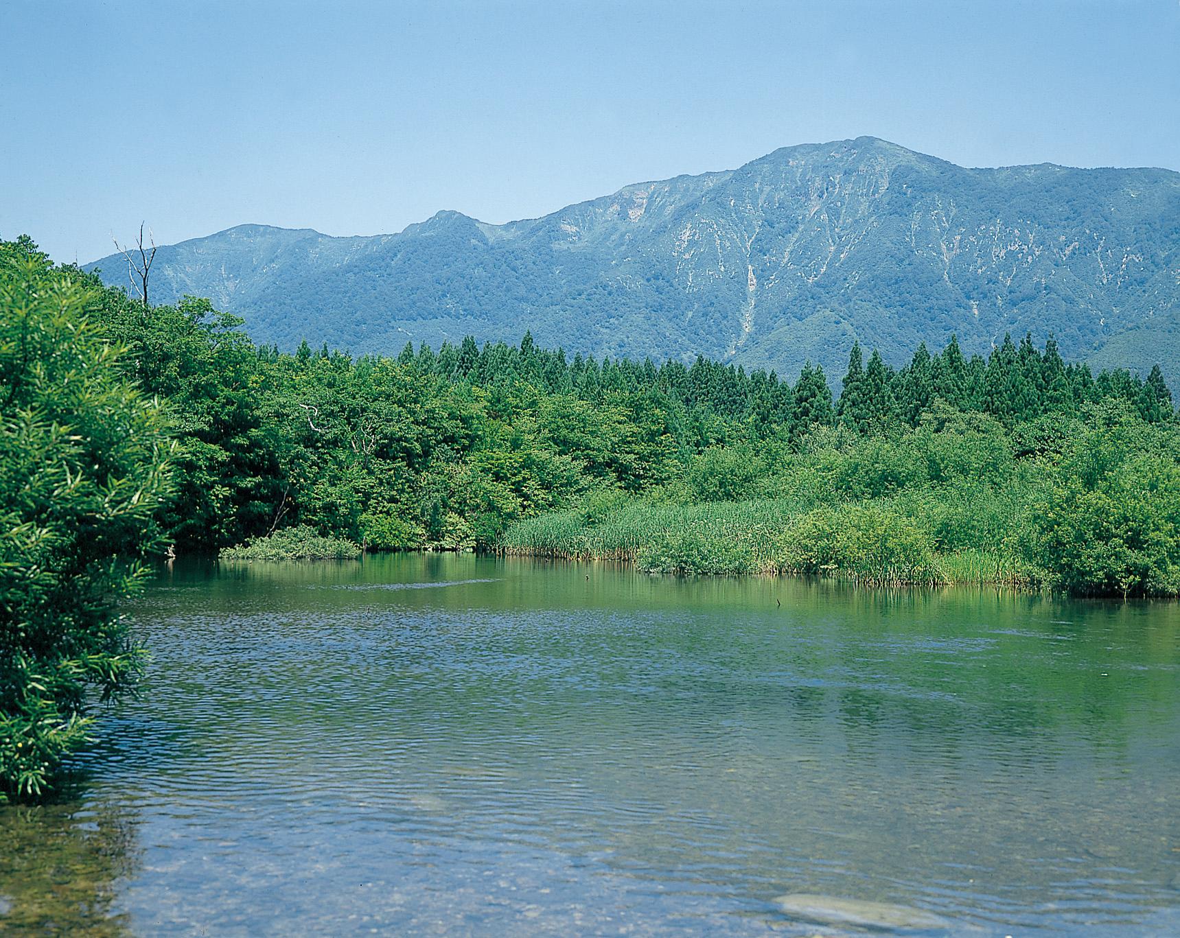 No.130064 禿岳