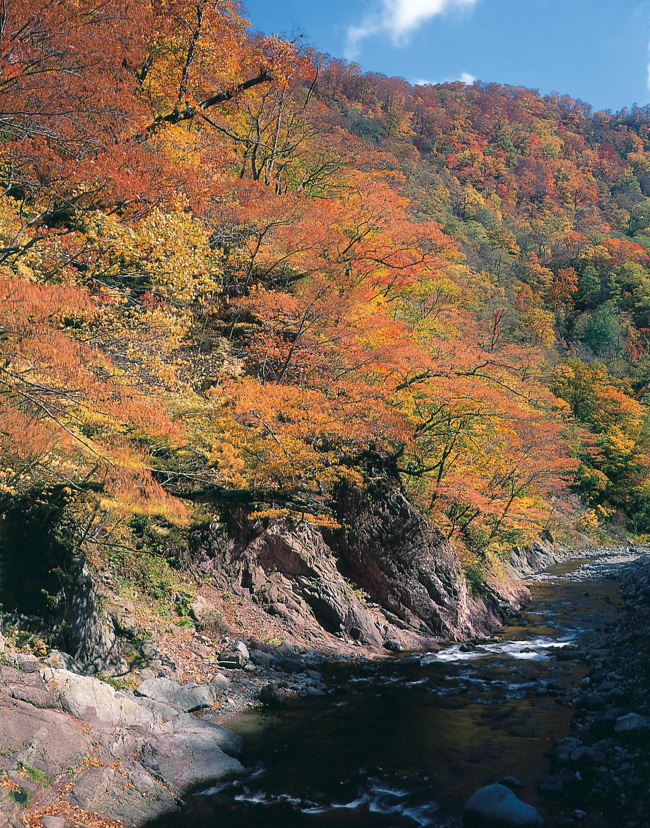 No.160035 紅葉の横川渓谷