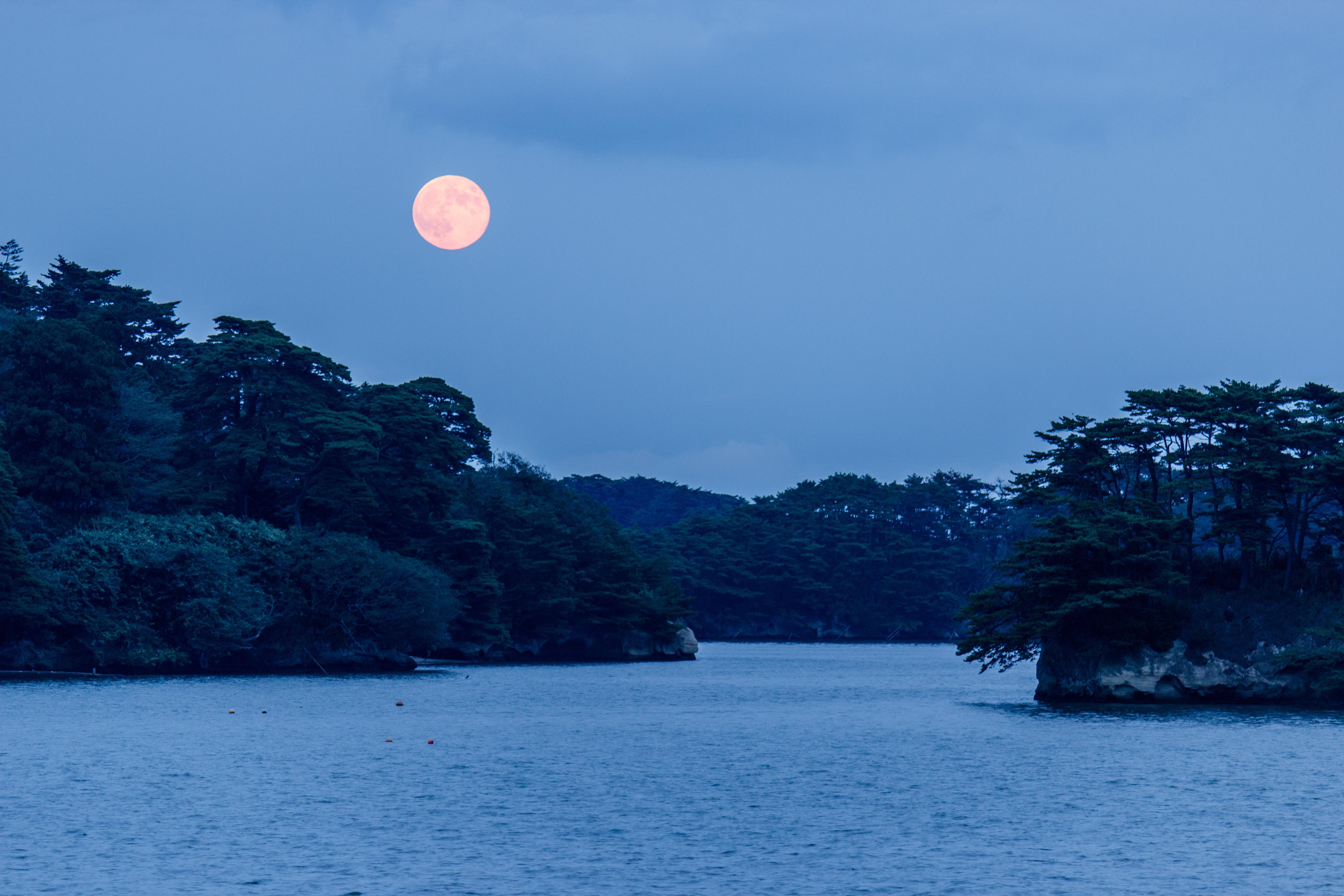 No.240014 松島と月