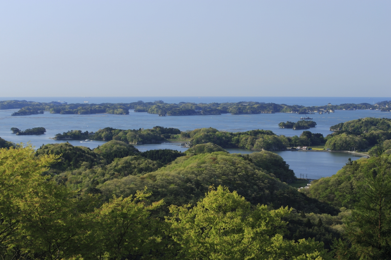 No.240103 富山(麗観)からの眺望