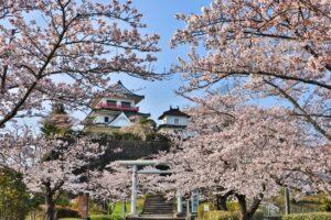 No.320003 桜と涌谷城
