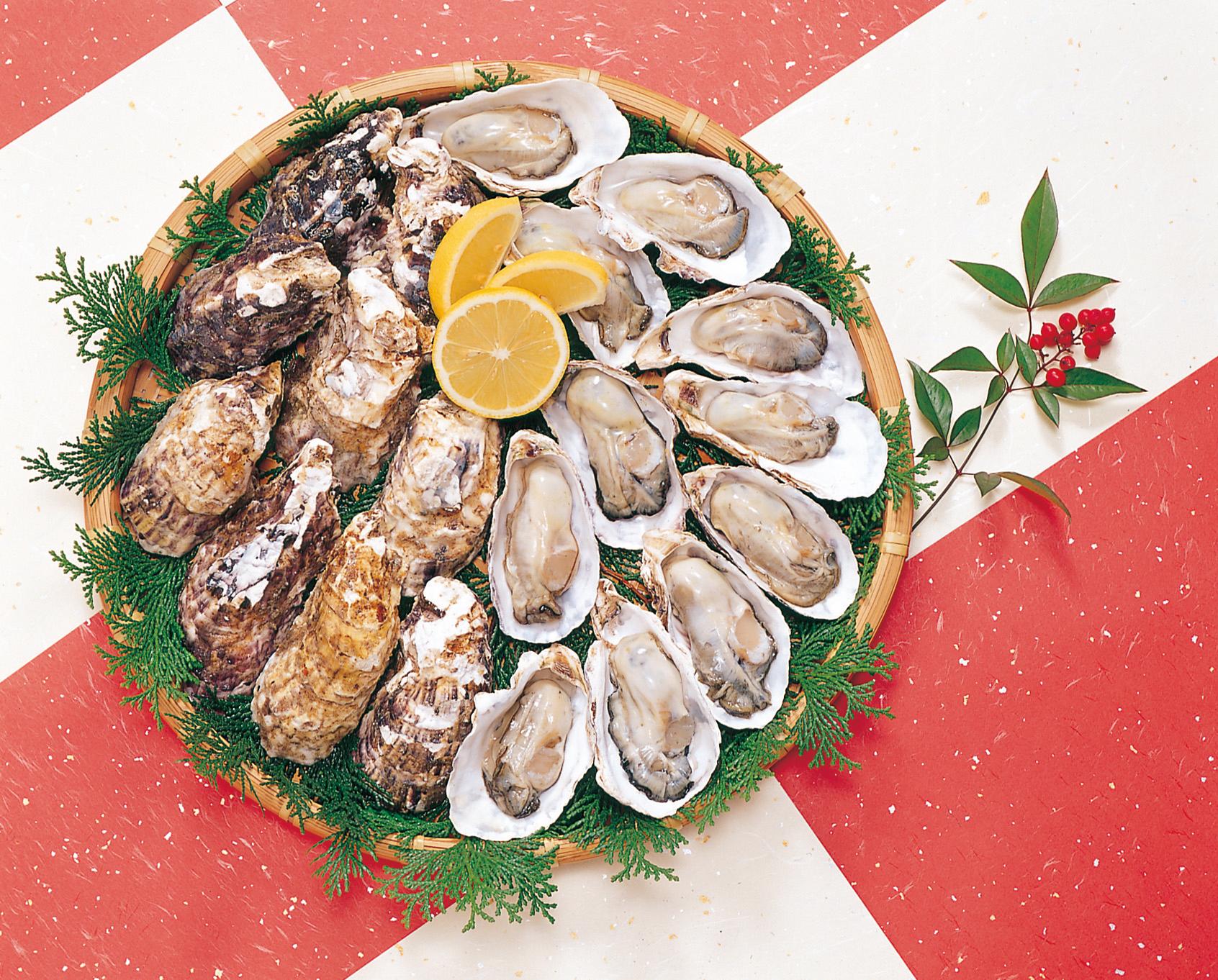 No.990068 牡蛎