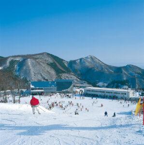 No.010365 スプリングバレー仙台泉スキー場