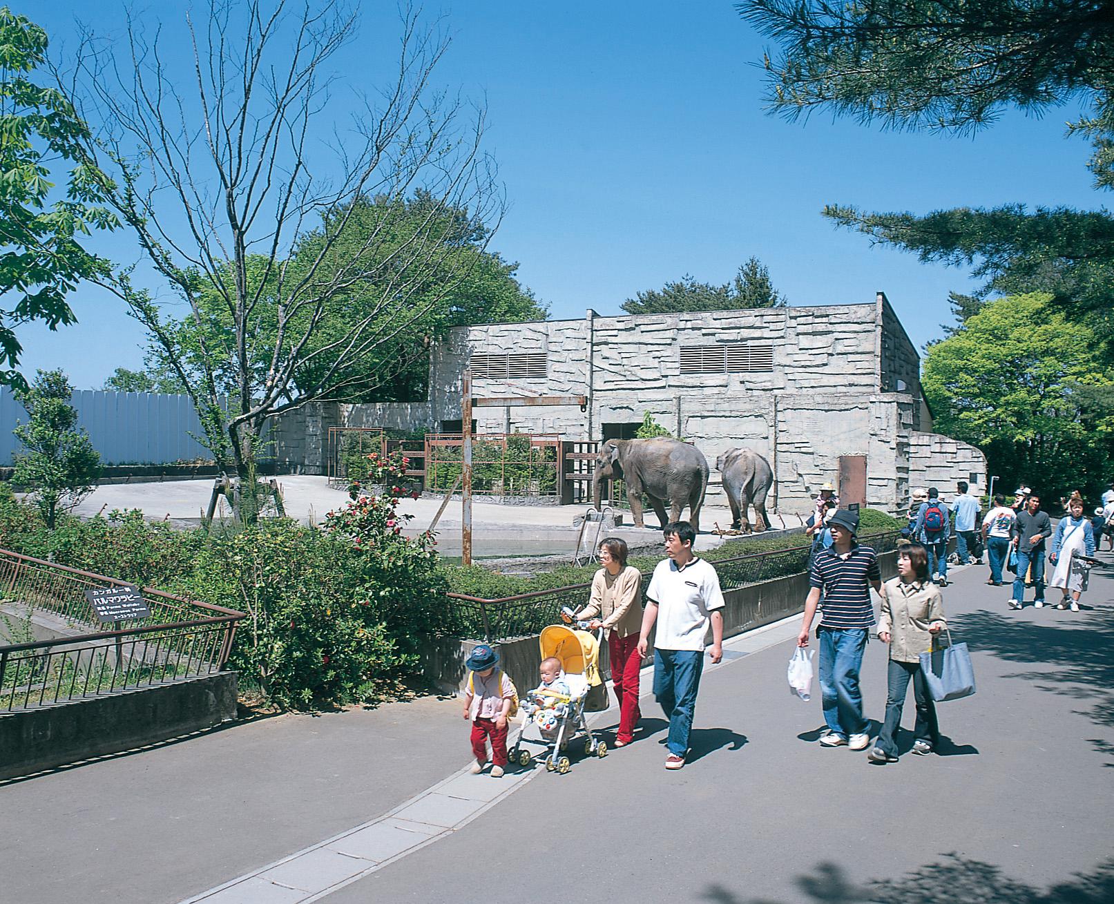 No.010381 八木山動物公園フジサキの杜
